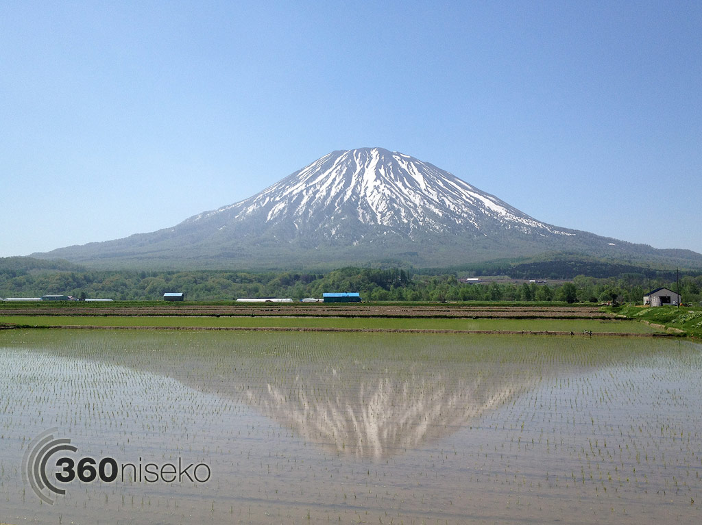 Mt.Yotei relection in a Kutchan rice field, 31 May 2013