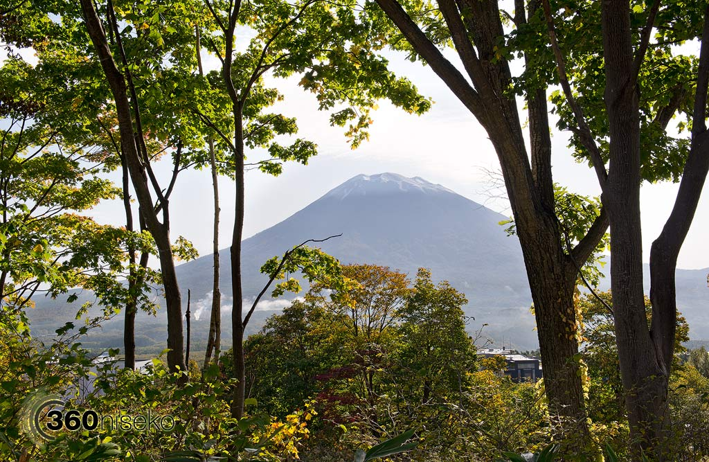 Looking through the autumn leaves in Hirafu at Mt.Yotei, 14 October 2013