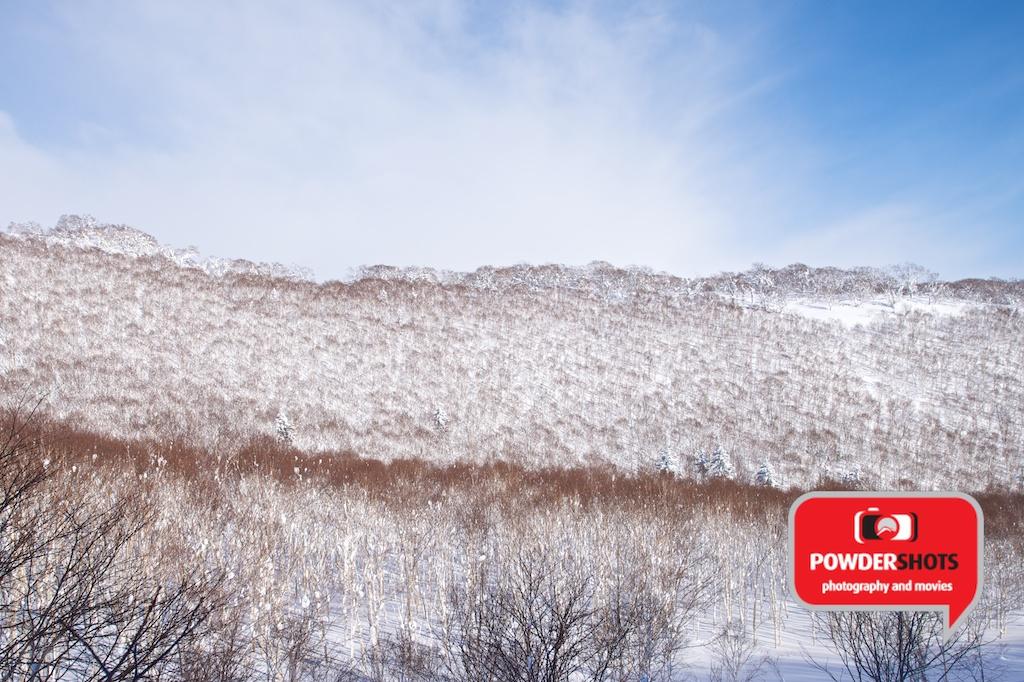Niseko-Hirafu-Sunshine-140114-5