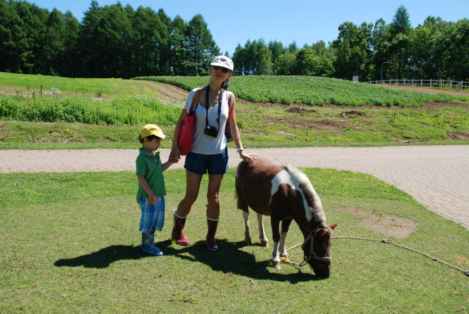 edventure-niseko-summer-camp-farm-visit-pony