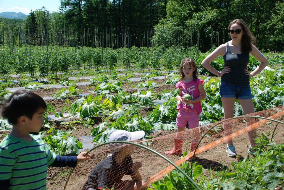 edventure-niseko-summer-camp-picking-vegetables