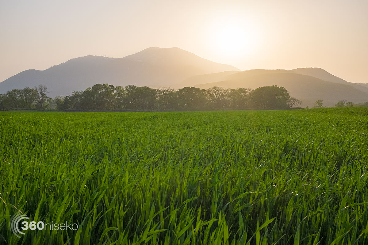 A mellow afternoon sunset looking over Mt. Annupuri, 28 May 2014
