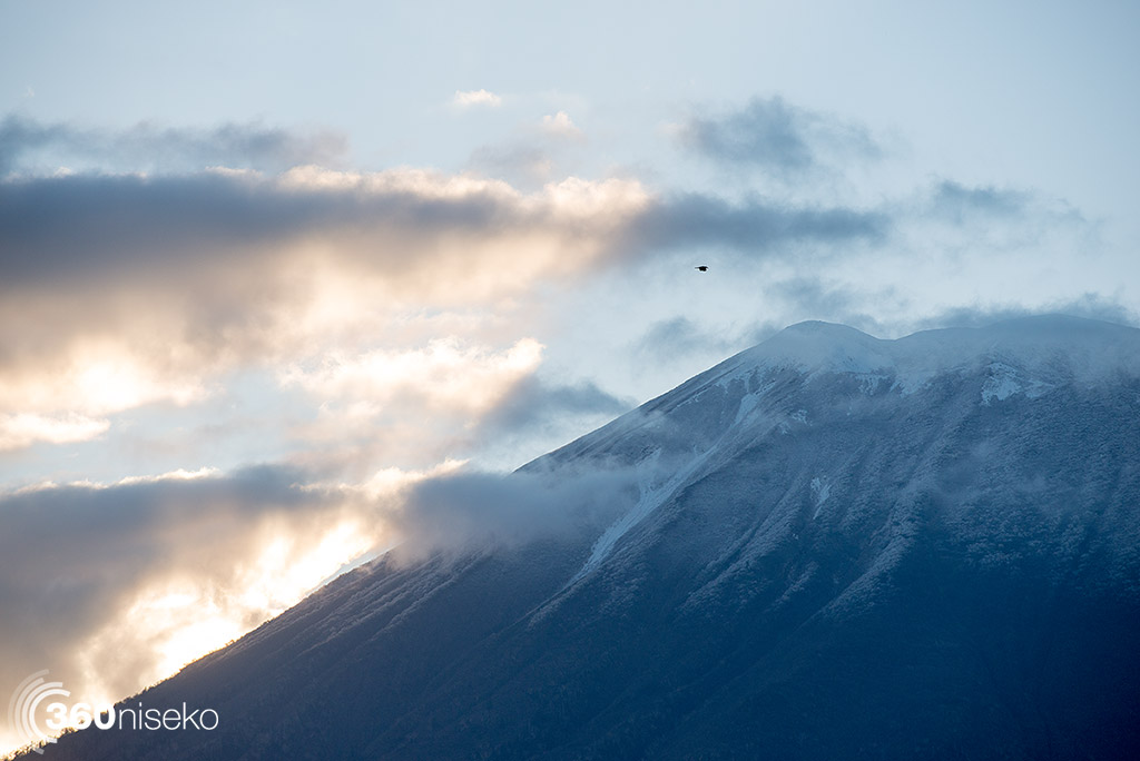 Fresh snow almost to the top of the tree line, 15 October 2014