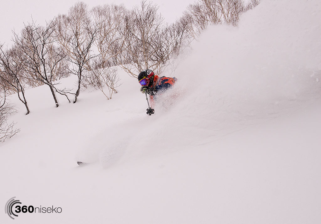 Powder joy, 19 January 2015