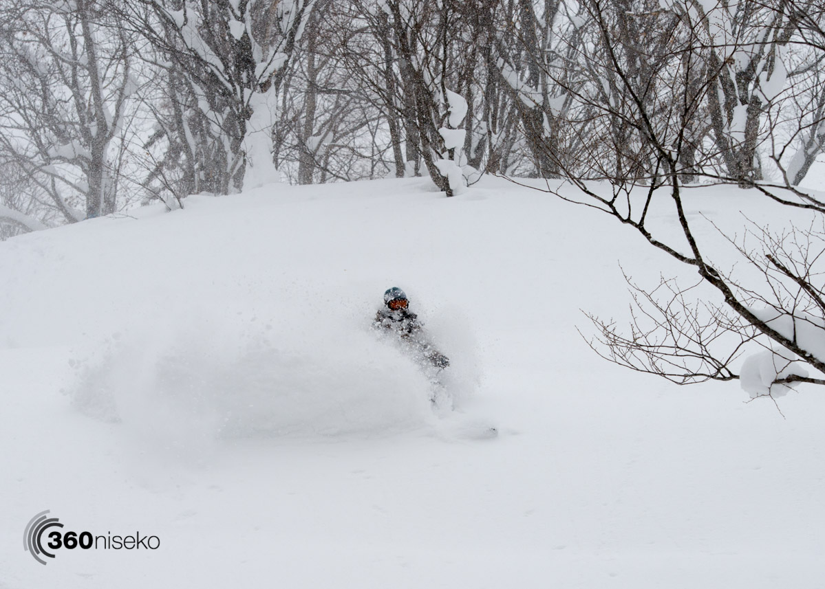Fresh pow in Kiroro, 25 February 2016