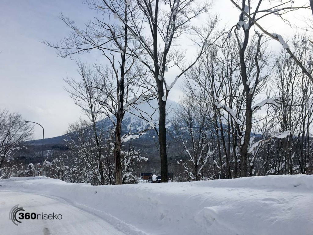 Mt.Yotei through the trees, 13 March 2016