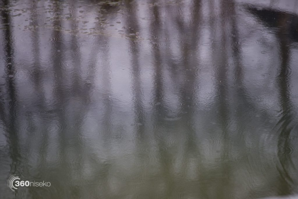 Rain, 17 February 2017