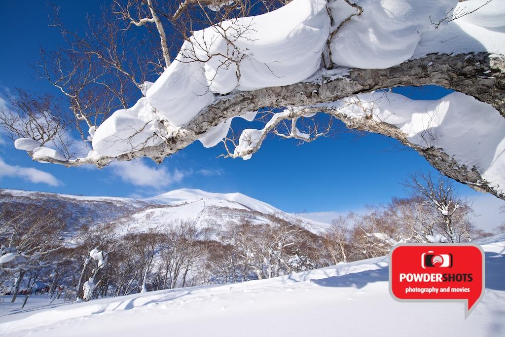 Niseko-Hirafu-Sunshine-140114-1