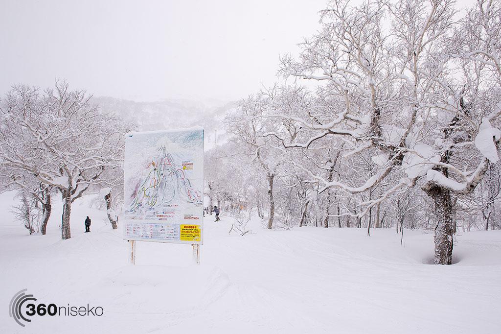 Fresh snow! 28 January 2015