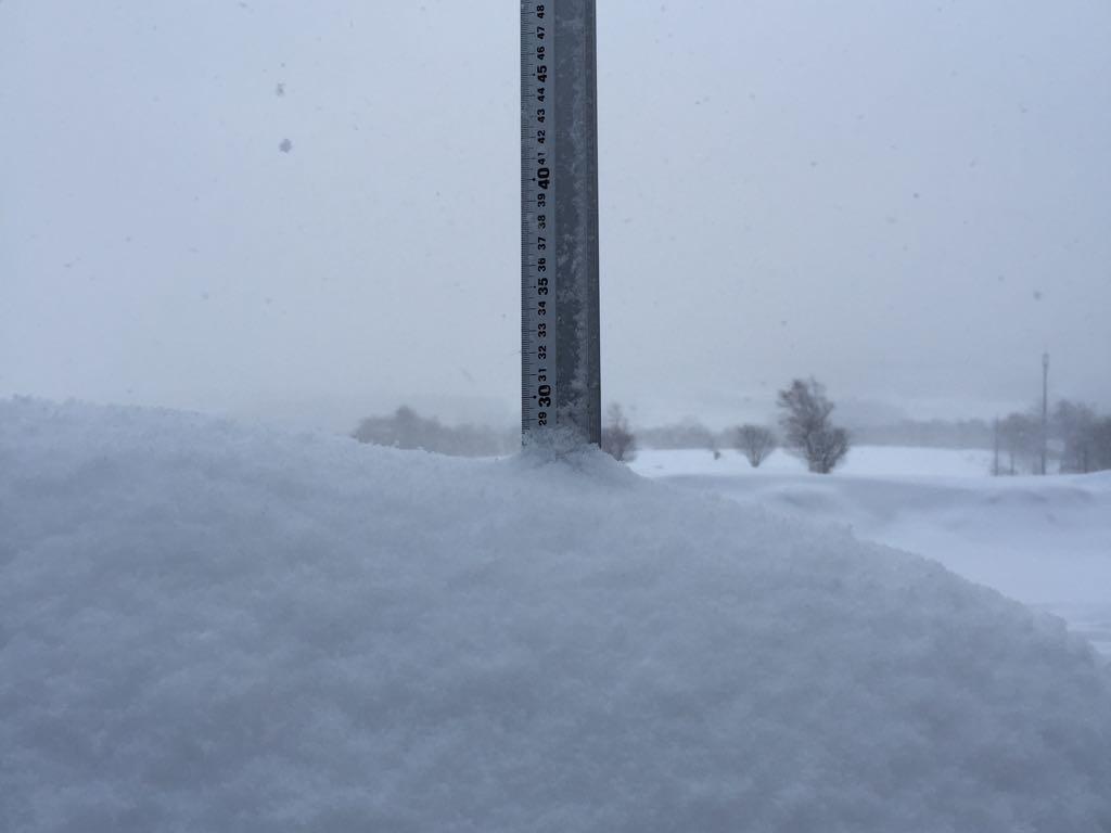 snowreport-2015-03-12