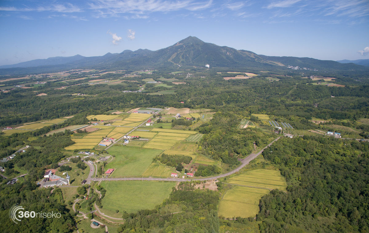 Rice fields on the outskirts of Niseko town, 13 October 2015