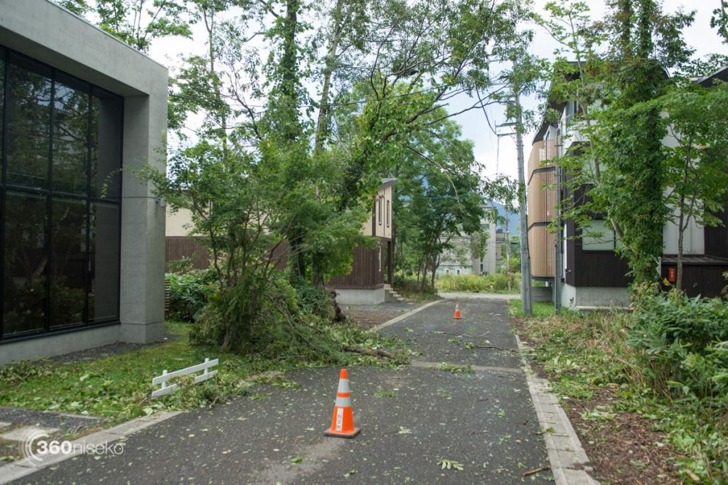 Power lines down, 31 August 2016