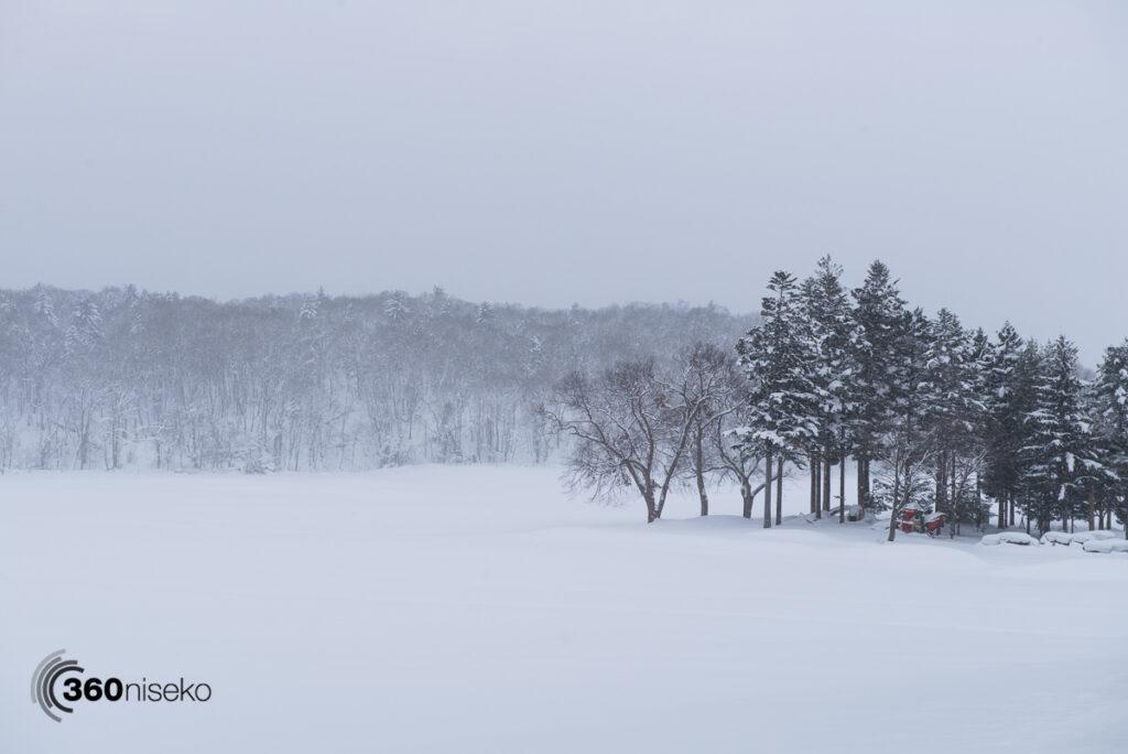 Stark Hirafu landscape, 15 January 2017